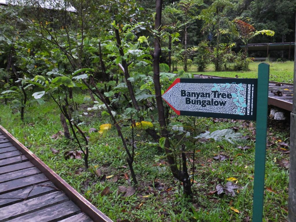 バンガローへの道案内 2014.2.13