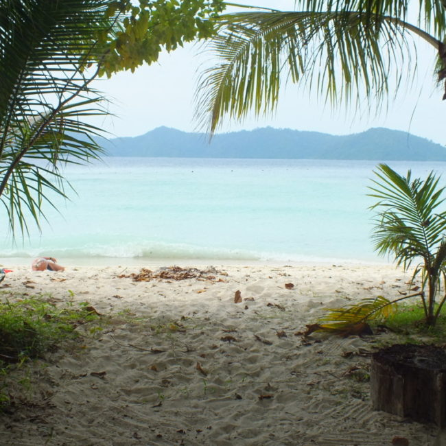 マムテック島 2012.6.28