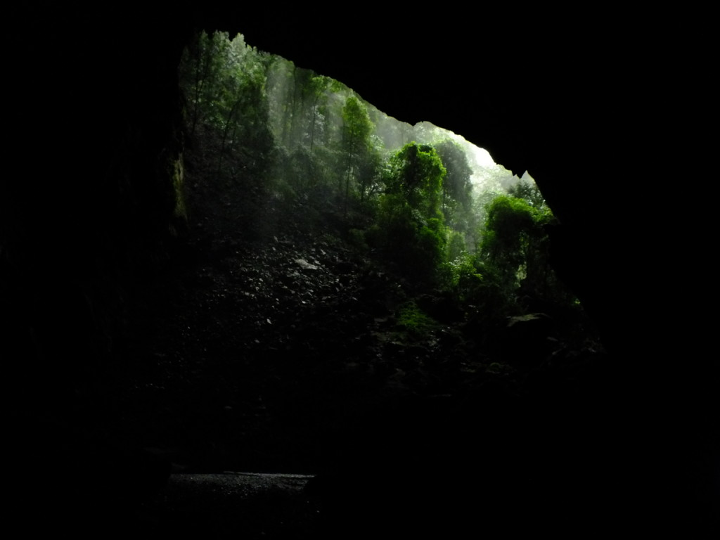 ディアケイブ グヌン・ムル国立公園 2012.7.25