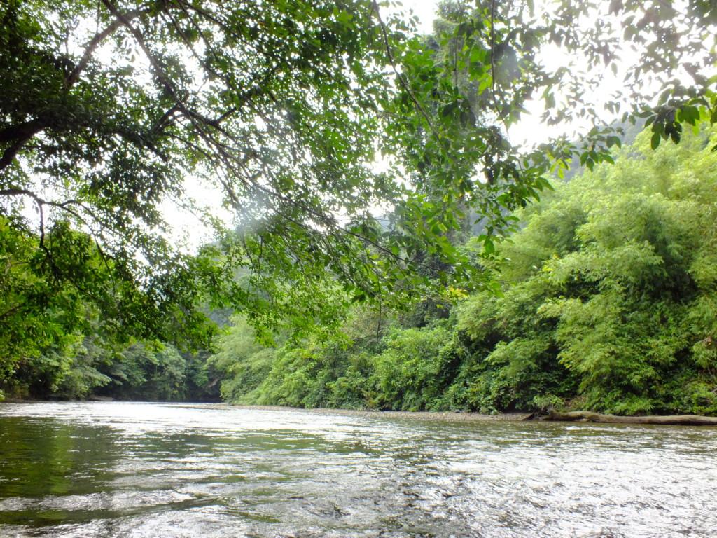 ボートで川を遡ります グヌン・ムル国立公園 2012.7.26