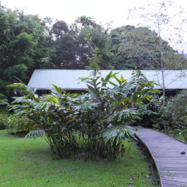 バンガロー建物  2014.2.12 グヌン・ムル国立公園