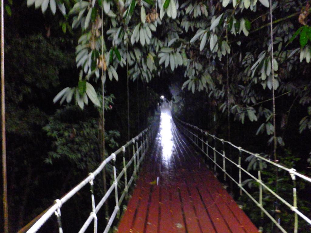 夜の橋を渡る 2017.2.15 グヌンムル国立公園
