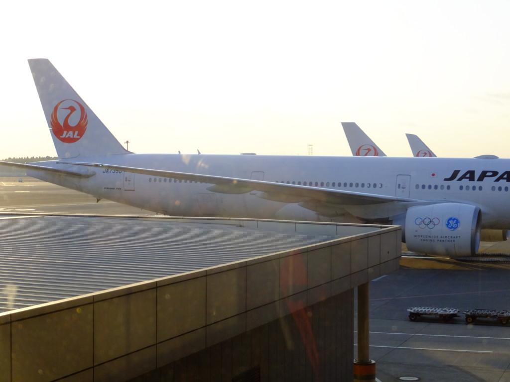 B777-300 日本航空 リオ五輪 2017.2.20 成田