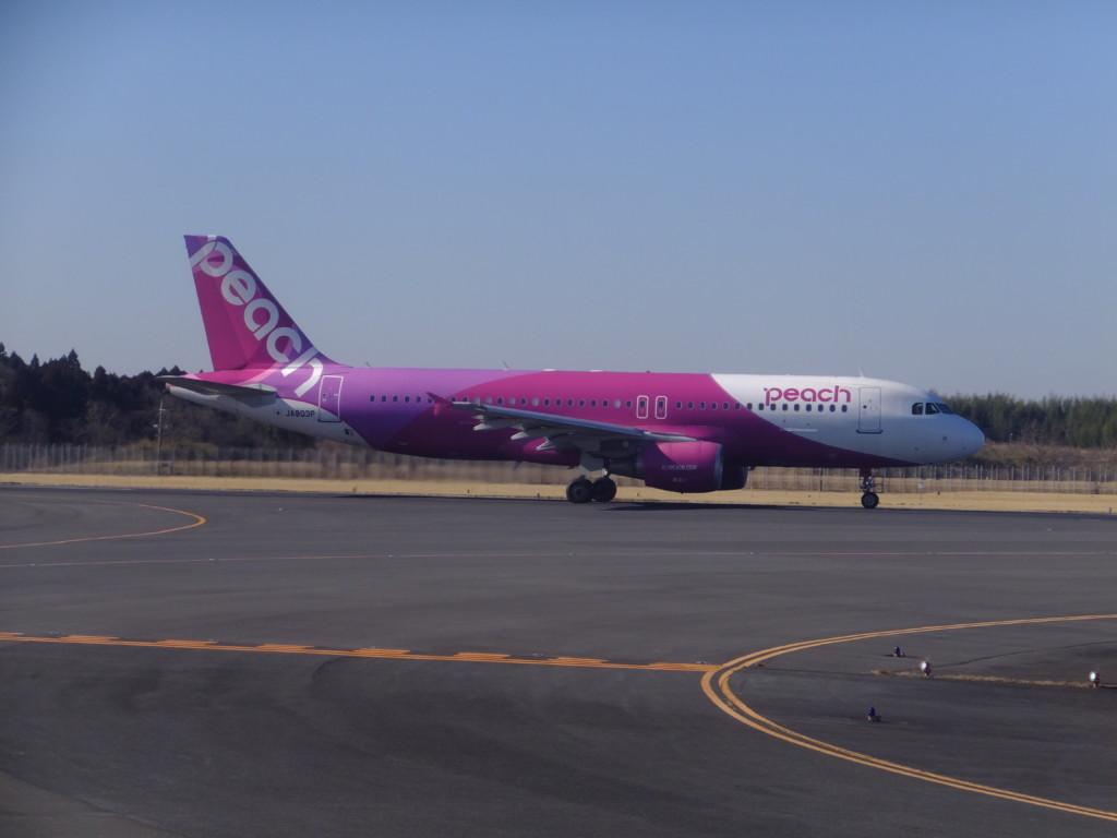 A330 ピーチ航空 2017.2.13 成田