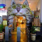 マレーシア ネコの町クチンにある ネコ博物館行ってみた ネコグッズ写真多数