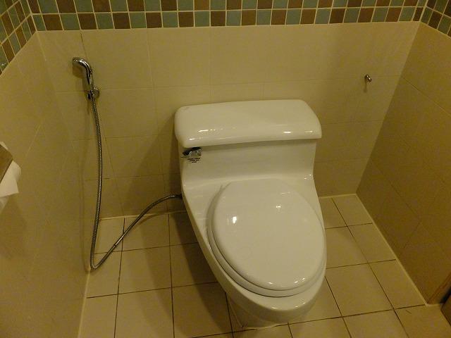 スイスガーデンホテルのトイレ