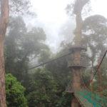 高所恐怖症の福山雅治も行ったホットスポット:マレーシア、ボルネオ島ダナンバレーのつり橋